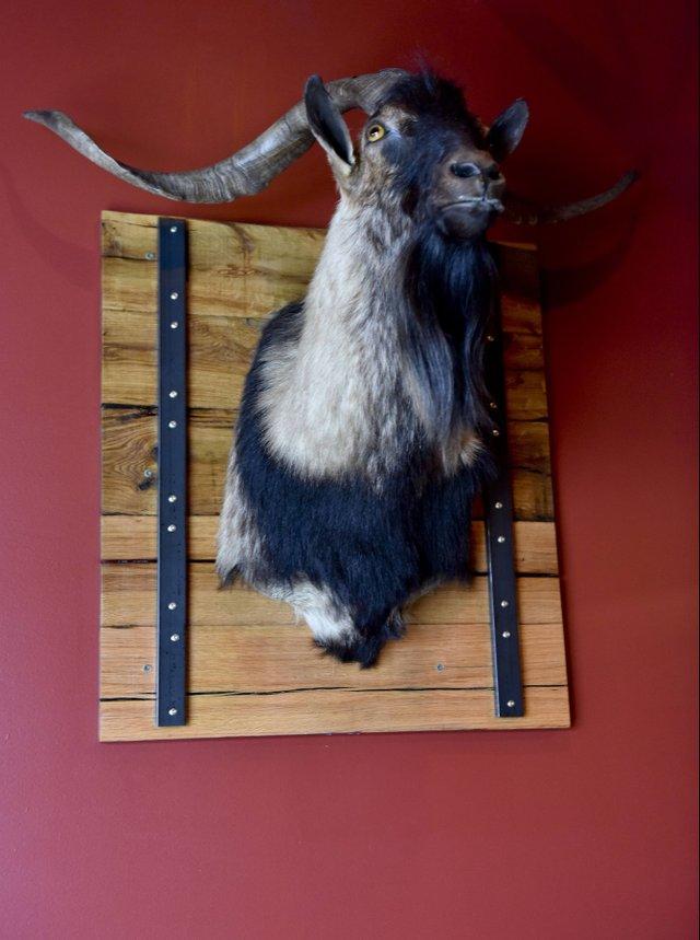 ICI BIZ - The Wooden Goat8.jpg