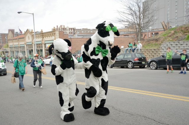 st pats day - 14.jpg