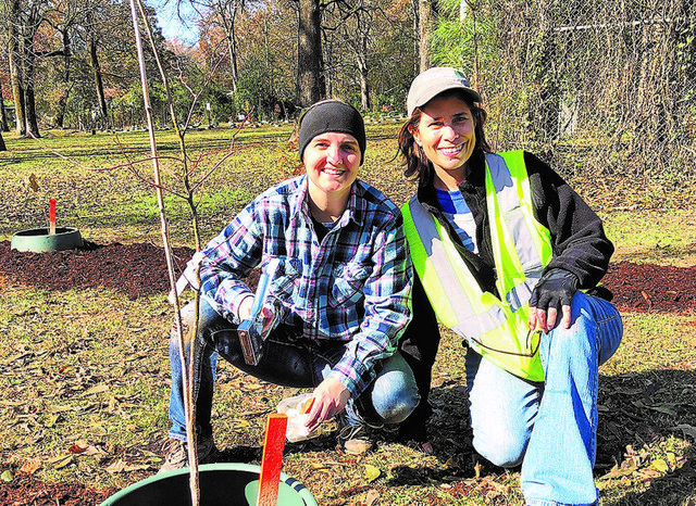 East Lake Park tree planting 11-16-19