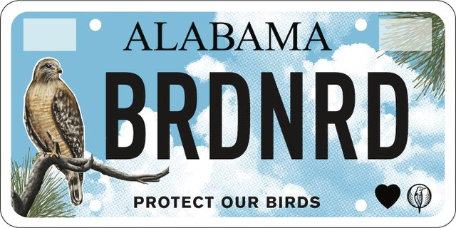 Audubon license tag